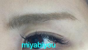 眉マスカラ後眉毛