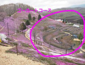 芝桜 ゴーカート